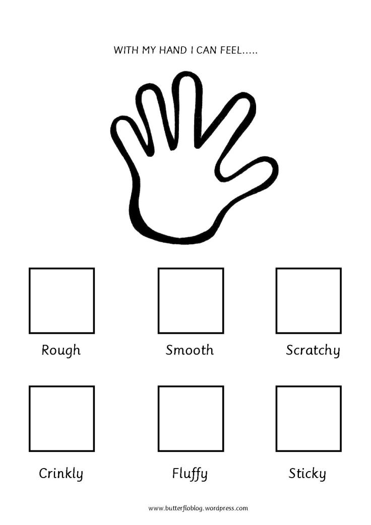 The Five Senses (Touch)
