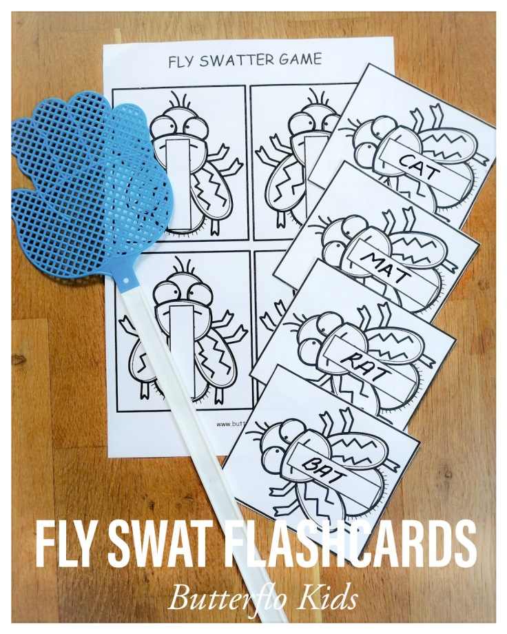 FLY SWAT FLASHCARDS